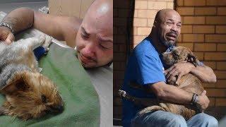 Ученые: потеря собаки для нас хуже потери близких. Что-что?!
