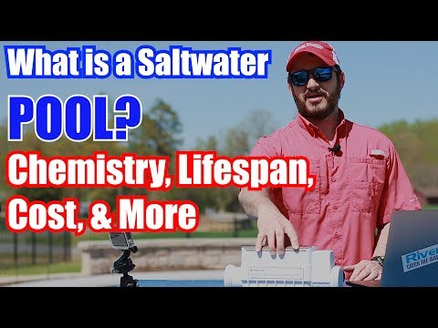 What Is A Saltwater Pool? Chemistry, Lifespan, Cost & More