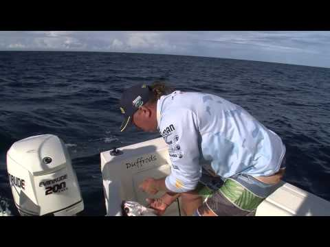 Fishing For Reef Species Using Peternoster Rigs - Reel Action TV