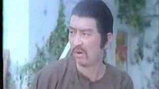 Master Alex Tse in  Funny Kung Fu Movie