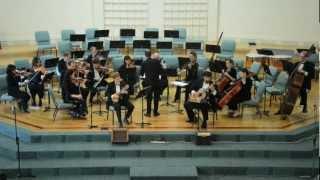 A.Vivaldi - Concerto for Lute (Mandolin) in D Major RV 93 - II Movement