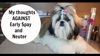 My Thoughts Against early Spay and Neuter