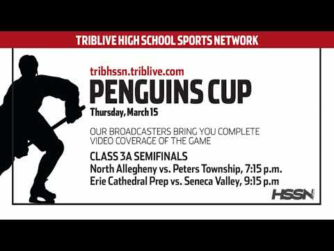 PIHL Penguins Cup Playoffs Class 3A Semifinals - North Allegheny vs Peters Township