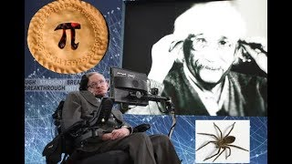 3.14 Spiders Baked In A Pi - This Week in Science (TWIS) Podcast - Episode 662