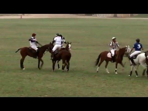 Dubai Polo Gold Cup 2012 pololine tv  dubai polo equestrian club
