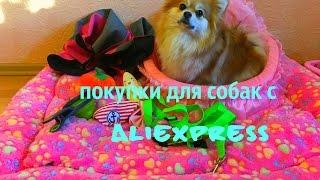 ПОКУПКИ ДЛЯ СОБАК С ALIEXPRESS/МНОГО ИНТЕРЕСНОГО