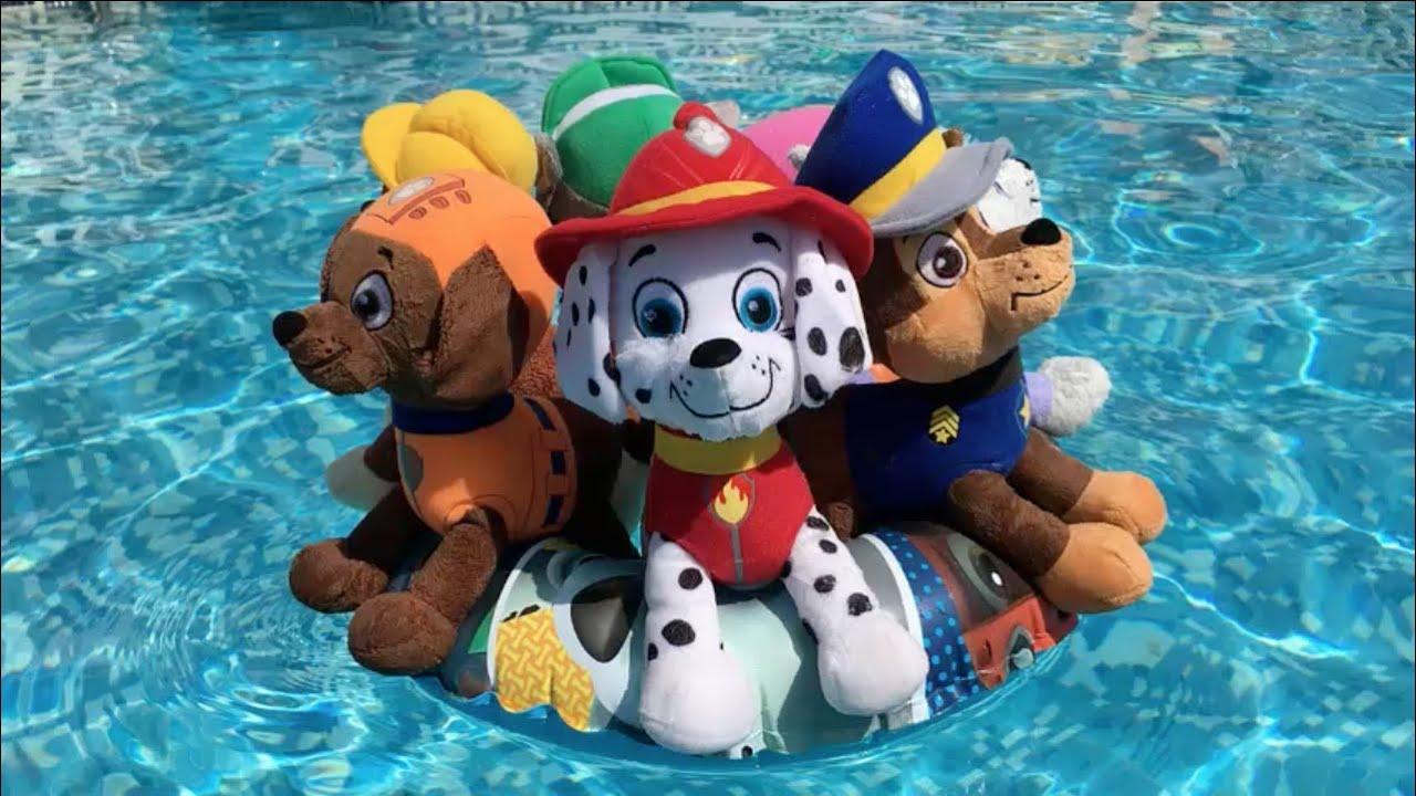 La Patrulla canina y la fiesta acuatica en la piscina
