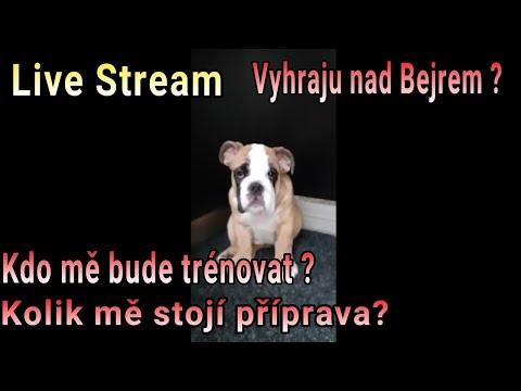 Live Stream : Vyhraju nad Bejrem ? // Kdo mě bude trénovat ? // Kolik mě stojí příprava ?