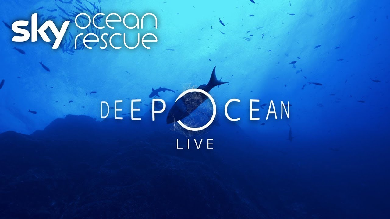 Deep Ocean Live: What you missed