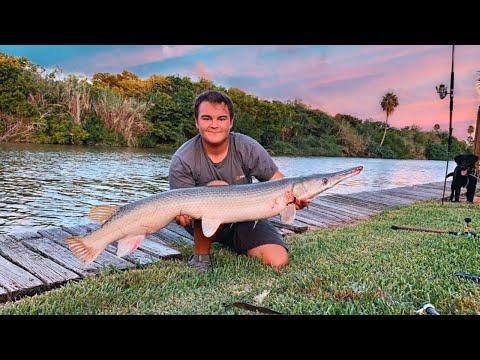 Fishing The RGV For Alligator Gar (CPR)
