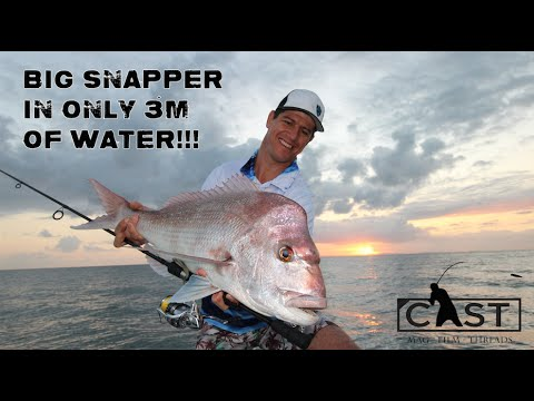 HOW TO CATCH SNAPPER IN SHALLOW WATER - Cast Magazine