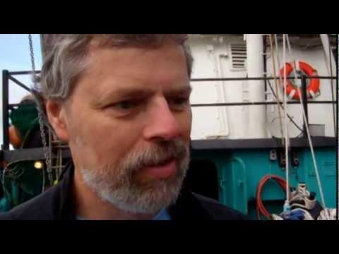 Shrimp Versus Prawns...Duke Solves Worlds' Question!