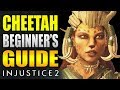 CHEETAH Beginner's Guide - Injustice 2 - All You Need To Know!