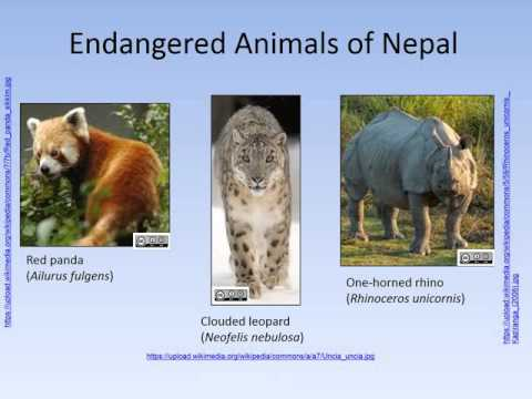 Nepal: A poor country rich in biodiversity