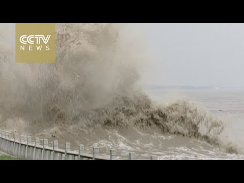 Footage: World's largest tidal bore forms in east China's Qiantang River