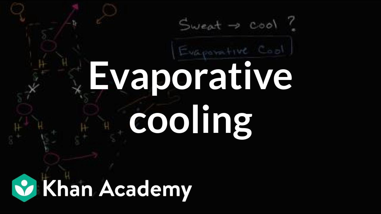 Evaporative cooling video khan academy