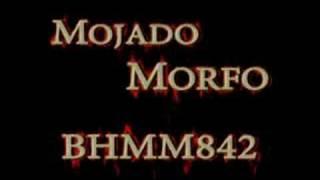 Play Morfo