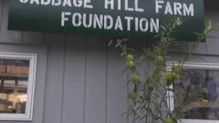 Cabbage Hill Farm's Recirculating Aquaculture System