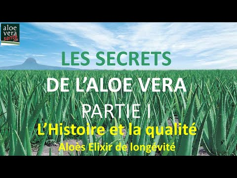 les secrets de l 39 aloe vera partie i avec le son la plante aux mille vertus histoire qualit. Black Bedroom Furniture Sets. Home Design Ideas