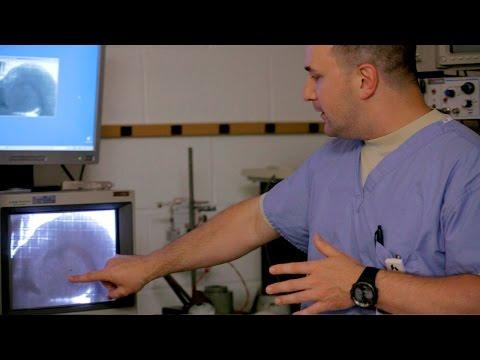 Emergency Medicine Academic Training