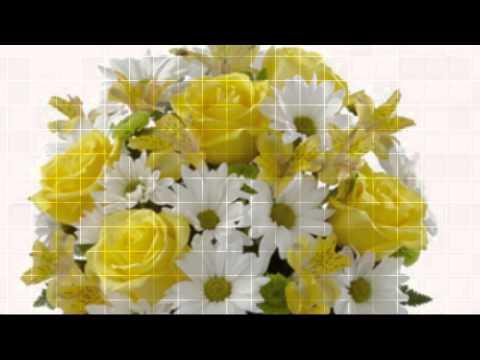 Flowers In Huntington Hamburg Hudson NY New York