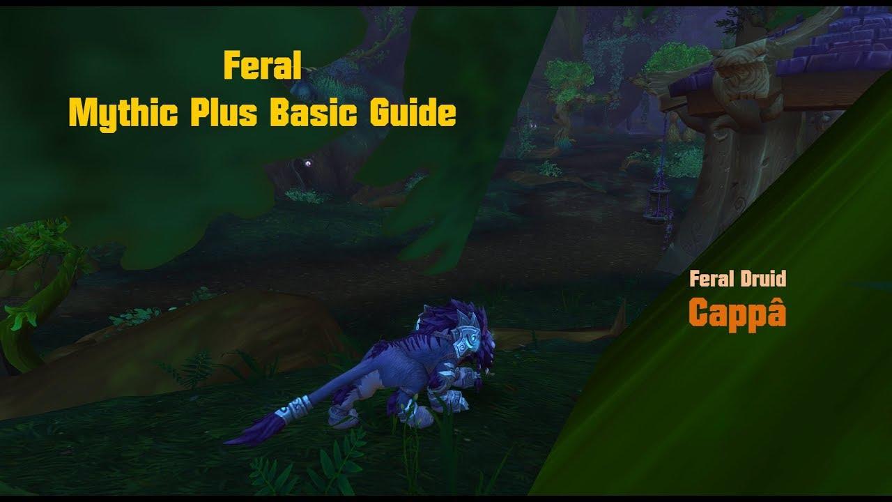 Feral Druid Guide For Mythic Plus Basics 7 3 5 Wow Deutsch Youtube