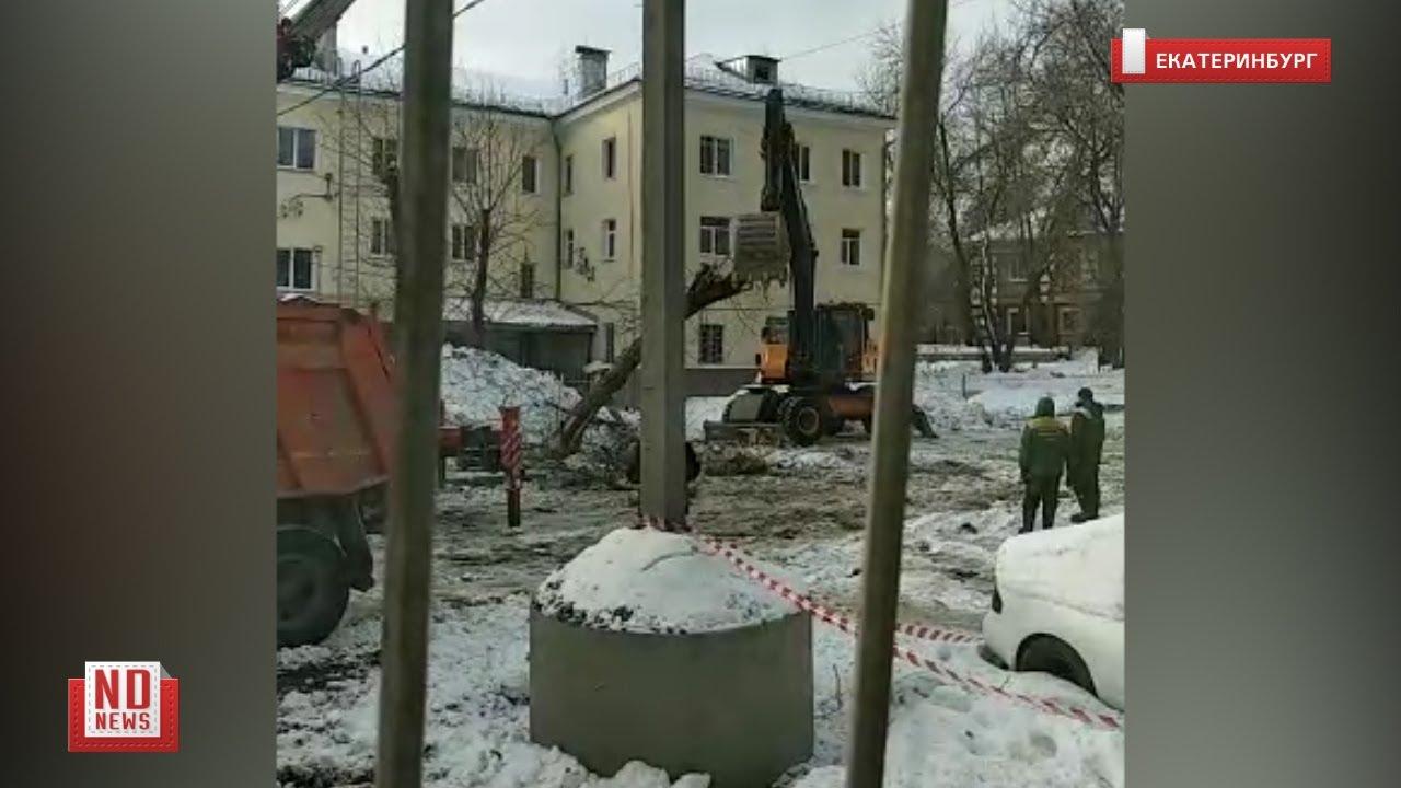 Экскаватор ломает дерево во дворе жилого дома. No comment