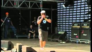 Кирпичи - Нашествие 2011