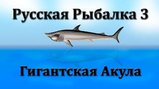 Російська Рибалка 3. Гігантська Акула