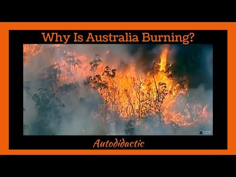 Why Is Australia Burning?