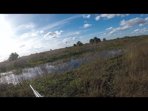 Snipe Hunting Florida