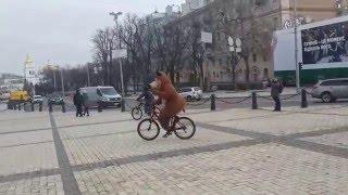 Киев, Софиевская площадь: медведь на велосипеде!(Ехали медведи на велосипеде :-D., 2016-03-07T17:31:02.000Z)