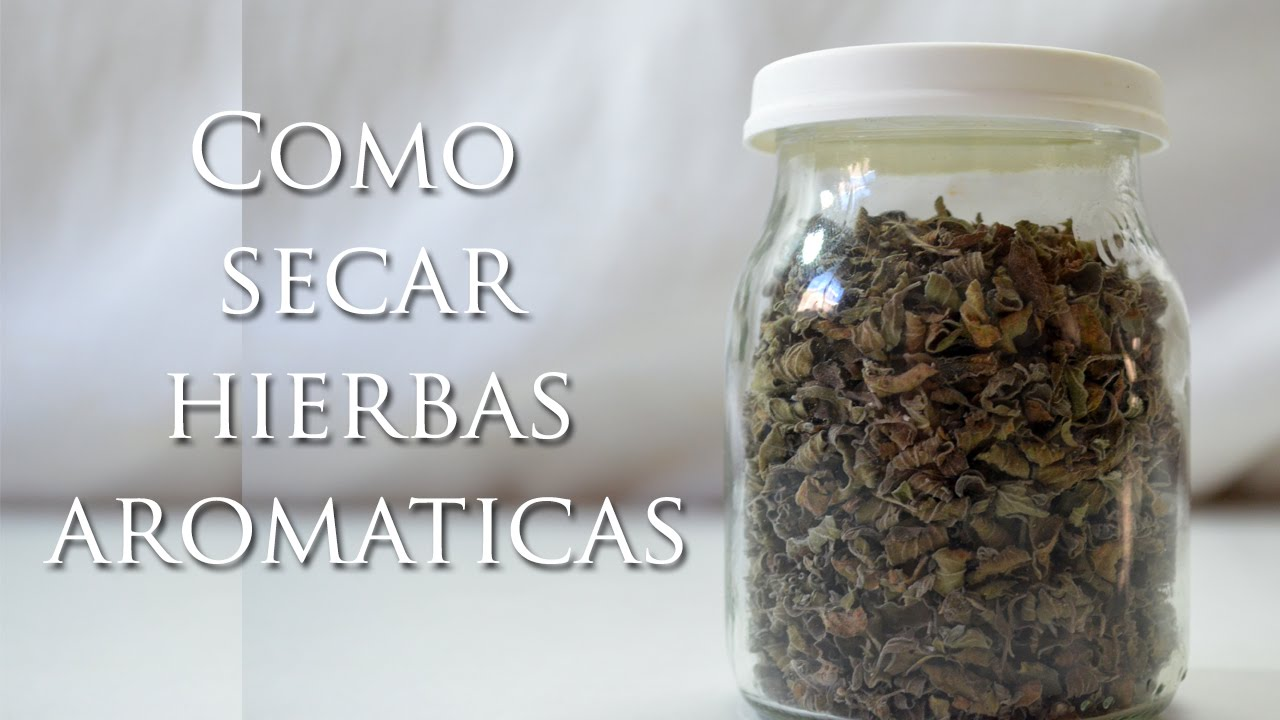 SECADO DE PLANTAS AROMATICAS EPUB DOWNLOAD