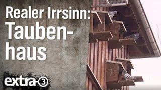 Realer Irrsinn: Das Taubenhaus bei Fulda