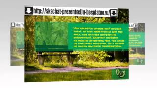 Презентация на тему Зоны лесов