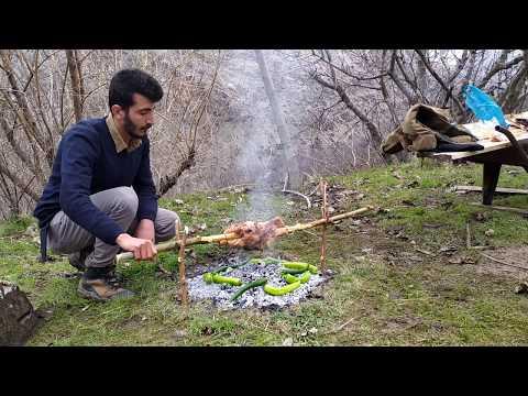 Tavuk çevirme (DOĞA'DA)
