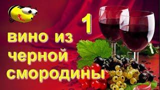 Домашнее вино из черной смородины (часть 1)