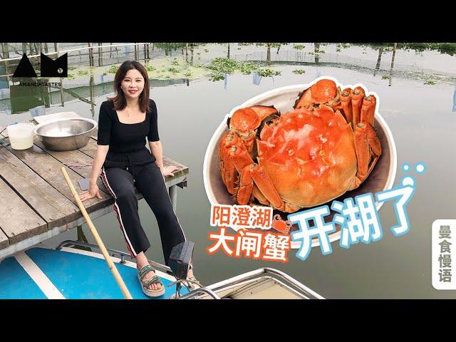 在阳澄湖承包一天蟹塘是什么体验?超满足Go to Yangcheng Lake to eat the freshest Chinese mitten crab丨曼食慢语
