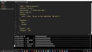 Node JS Tutorial for Beginners #21 - The package.json File