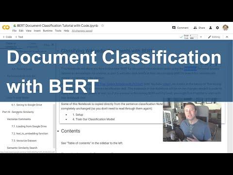 BERT Document Classification Tutorial with Code