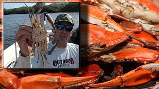 Crabs!!! Catch, Cook and Have a Party!!!
