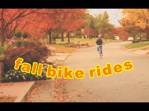 7. Bike