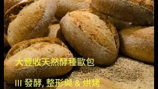 大豐收歐式麵包III 發酵整形烘烤天然酵種啤酒黑麥大麥藜麥莧米亞麻仁籽 Sour Dough Artisan Bread III Shaping Beer Quinoa multi grains