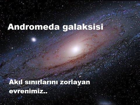 Andromeda: Harper/Delete | Headhunter's Holosuite Wiki ...