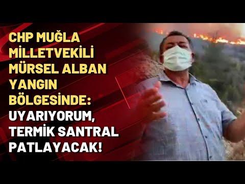 CHP Muğla Milletvekili Mürsel Alban yangın bölgesinde: Uyarıyorum, termik santra