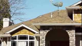 Whale Weathervane - Adding The Charm Of The Sea To Your Homescape
