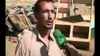 شاهدو ماذا يحدث جنوب العراق