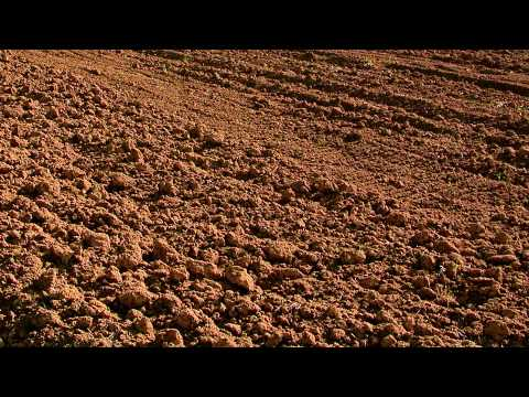 Importance of Soil Fertility Video by Bio Huma Netics