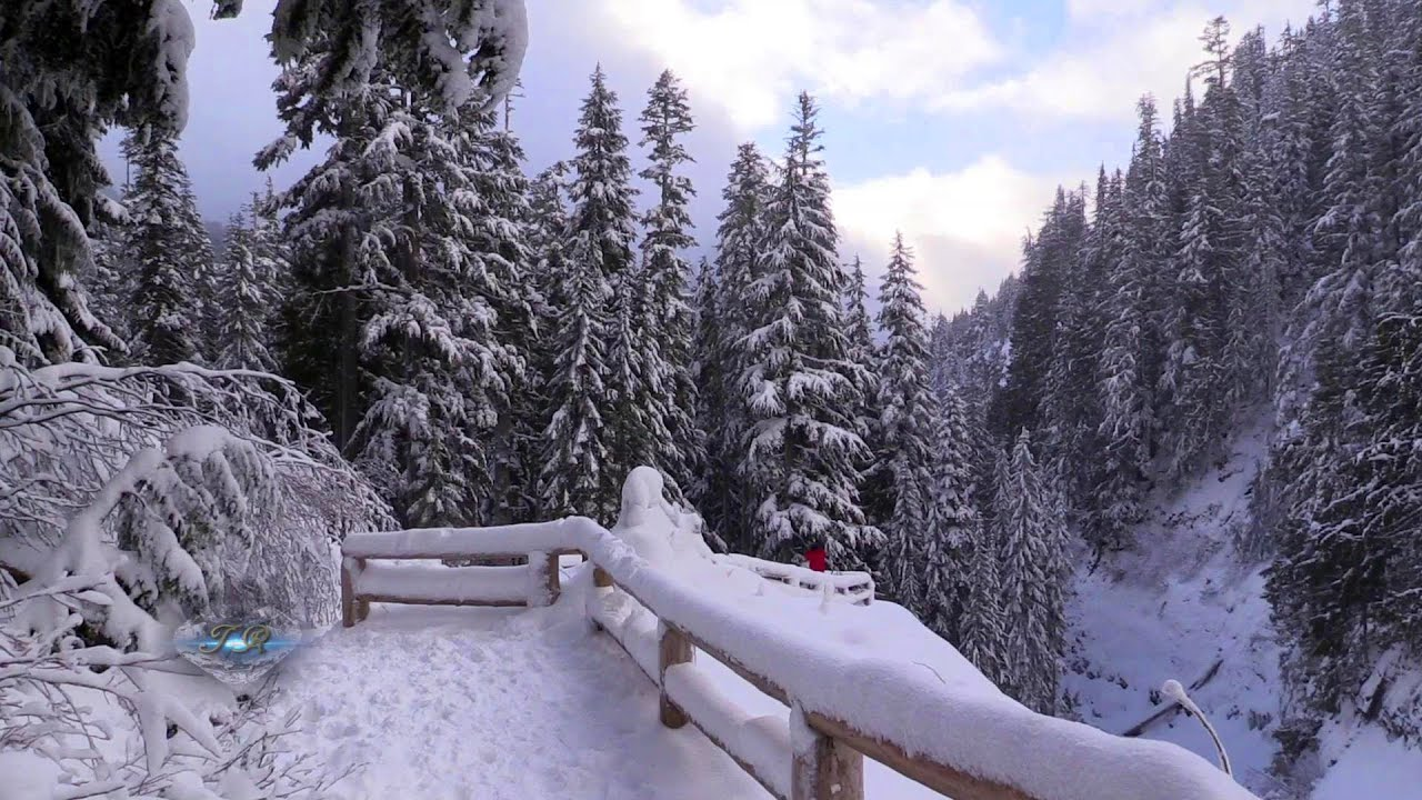 Winter at Mt. Rainier National Park 20141230 1080p HD ...