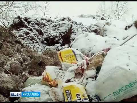 В Заволжском районе Ярославля образовалась свалка